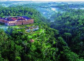 تور بالی (ساحلی + جنگلی)