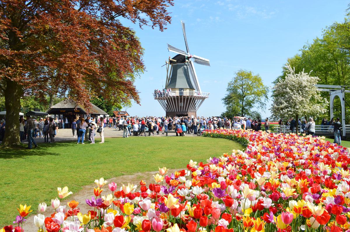 جشنواره گل کوکنهوف هلند کی برگزار میشود