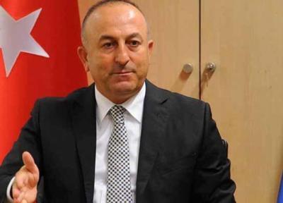 ترکیه از برخورد فرانسه با معترضین انتقاد کرد