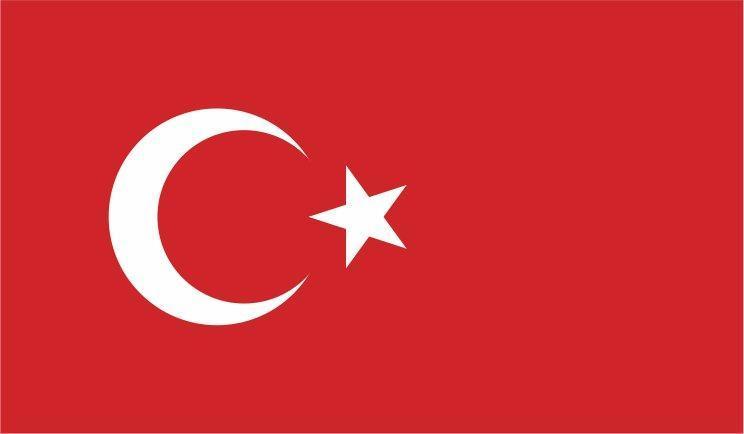 در پی قتل دو موسیقی دان ترکیه از چین درخواست کرد