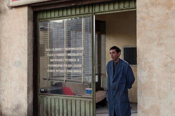 اسکار ایتالیا برگزیدگانش را شناخت، صدرنشینی داگمن و رما