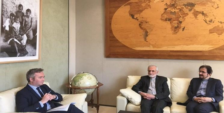 دیدار خرازی با دبیر دولت نزد وزارت اروپا و امور خارجه فرانسه