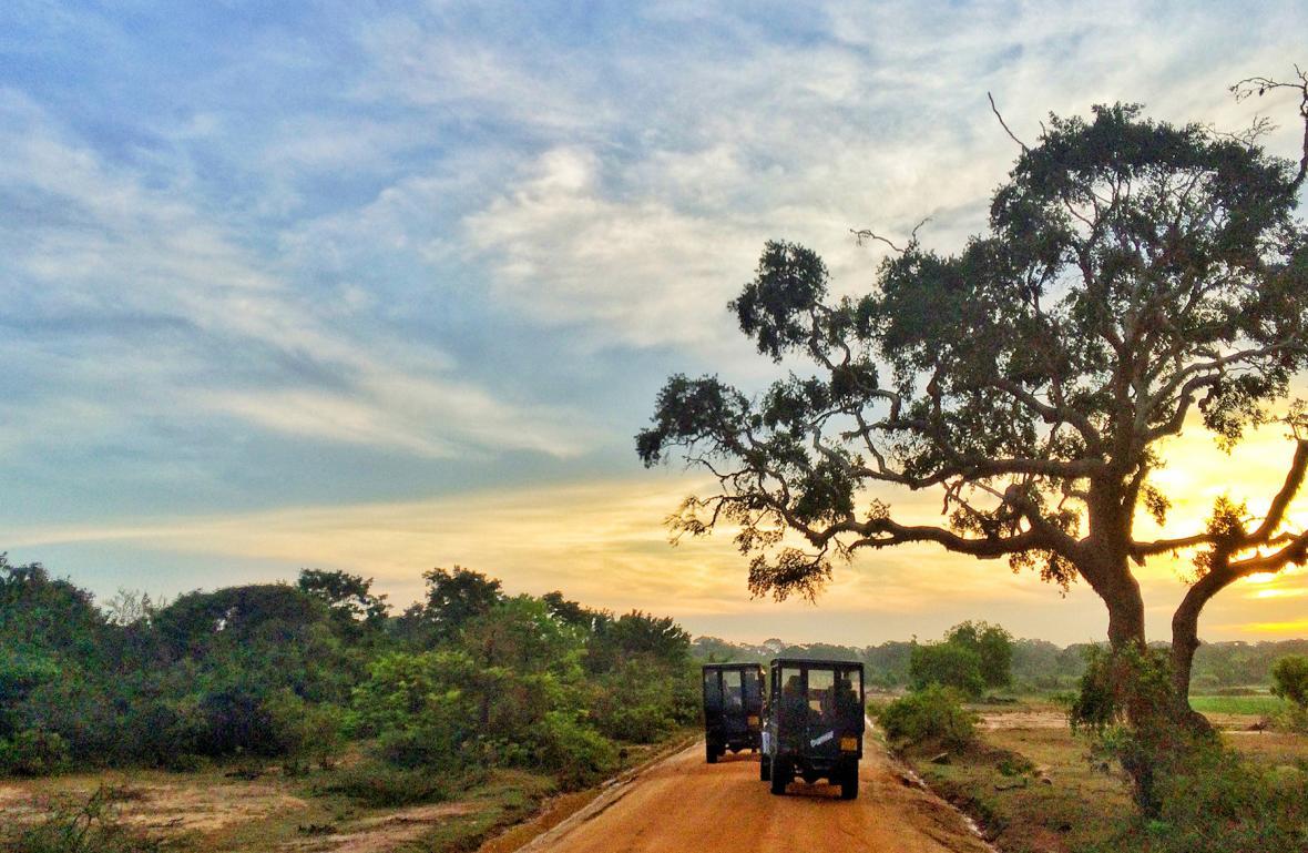 پارک ملی یالا (سریلانکا)