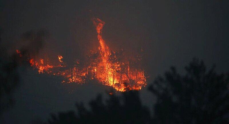 وقوع آتش سوزی های گسترده در مجمع الجزایر قناری