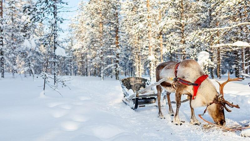 بهترین مقاصد گردشگری در دی ماه ، این 5 مقصد مناسب سفر در زمستان هستند
