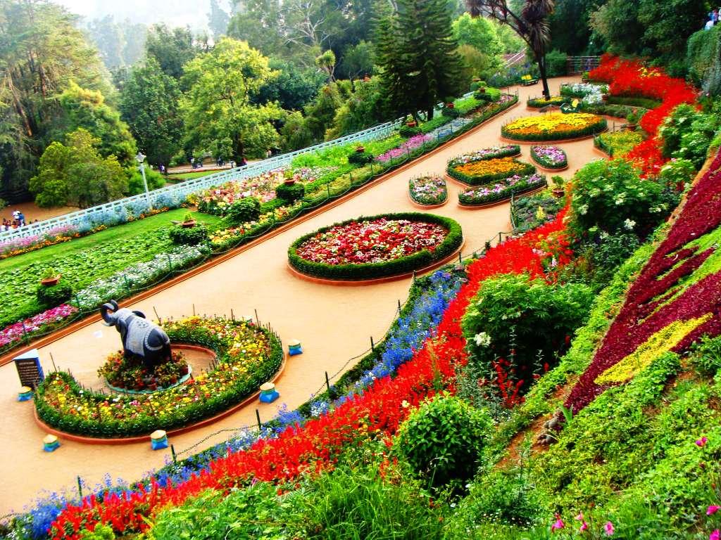 باغ رز بانکوک