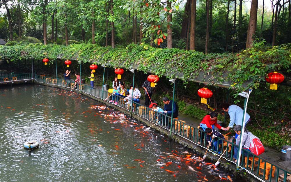 رفتن به بهترین پارک های چنگدو در تور چین